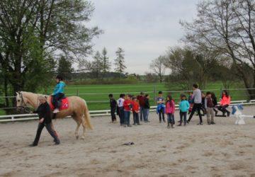 Reitstall-Diana-Schulklasse-besucht-uns (3)