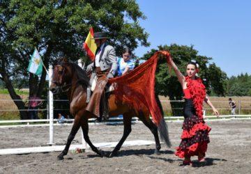 Reitstall-Diana-Sommerfest-2016-K-Helfenstein (132)