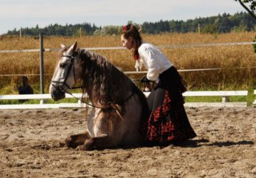 Reitstall-Diana-Sommerfest-2016-W-Knaus (124)